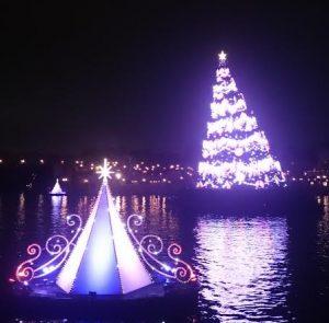 カラーオブクリスマスツリー
