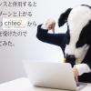 クリテオ広告導入!担当者から直接聞いたアドセンスと併用する3つのメリットとは?